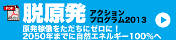 脱原発アクションプログラム2013